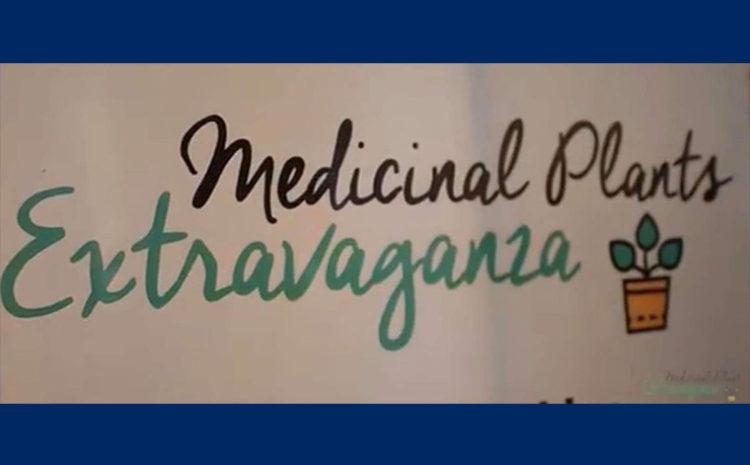 Online exhibition of medicinal plants at ERU